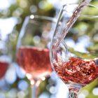 """""""Vinifera"""", il Salone dei Vini Artigianali di Trento"""